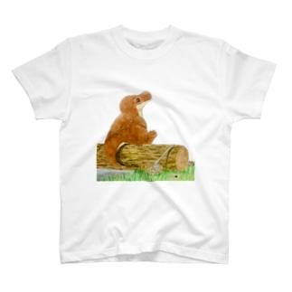 ティラノサウルスのレックスとメガテリウムのテリー T-shirts