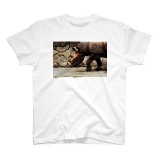 サイT T-shirts