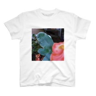 すいてきとはな T-shirts