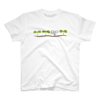 思う屋のWAKABA T-Shirt