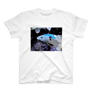 アオゴイ T-shirts