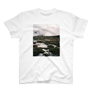 湿原 T-shirts