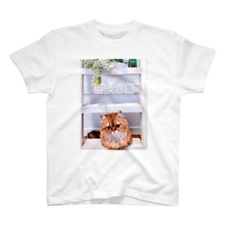 お悩み相談受付中 T-shirts