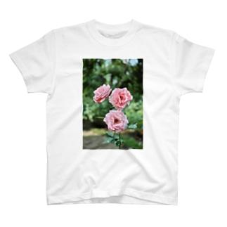 ちょい枯れた薔薇 T-shirts