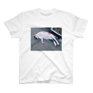 魔性の猫 T-shirts