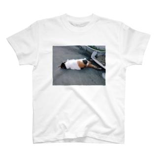 魔性の猫(オフショット) T-shirts