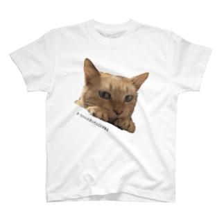 きーちゃんは言いたいことがある T-shirts