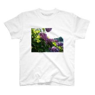 梅雨の晴れ間 T-shirts