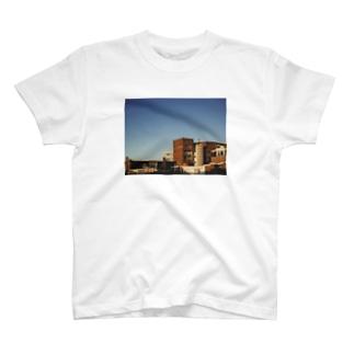フォト/オランダ風景1 T-shirts