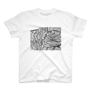JOYFUL | Cool Cat T-shirts