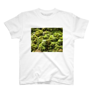 全国名水百選・垣花樋川(かきのはなひーじゃー) T-shirts