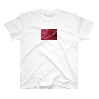 butterfly-velvet-oceanの乙女の嬉し涙 T-shirts