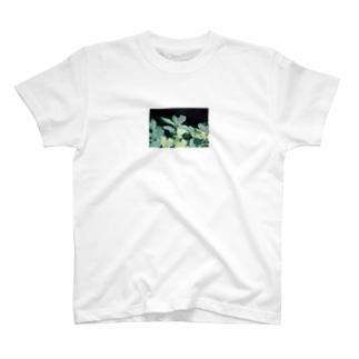 上高地のいきもの2 T-shirts