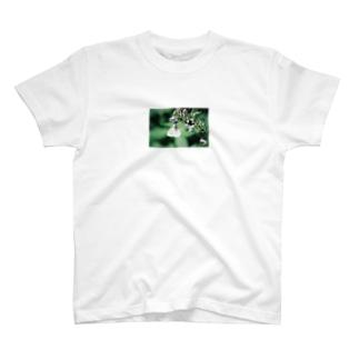 上高地のいきもの3 T-shirts