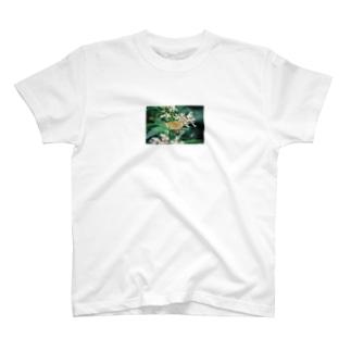 上高地のいきもの4 T-shirts