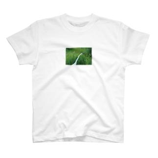 婚姻色のダイサギ T-shirts