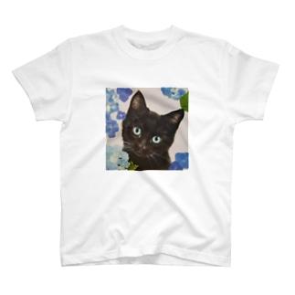 紫陽花とくろねこ T-shirts