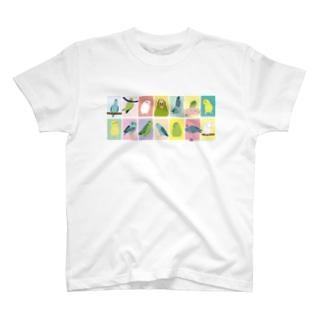 表情色々マメルリハ T-shirts