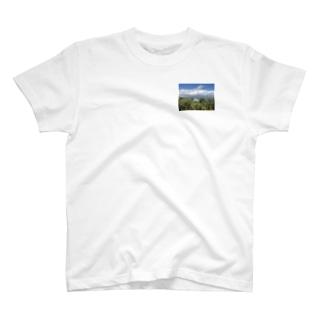 ハンガリー トカイでの葡萄畑 T-shirts