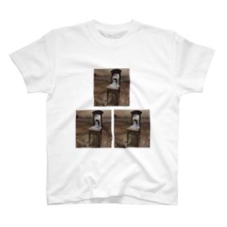 一回で死ぬTシャツ T-shirts