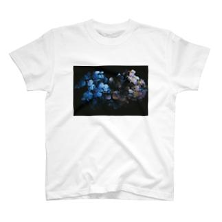 【花途夢】紫陽花 ph data./2020.7.7 T-shirts