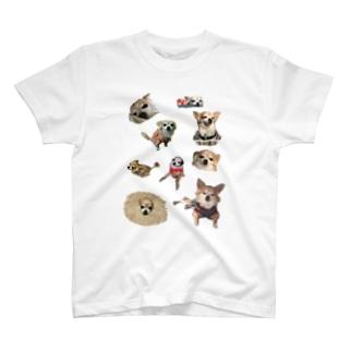 Oシャツ T-shirts