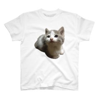 まあさん不思議Tシャツ T-shirts