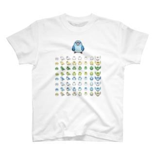 整列マメルリハ隊【まめるりはことり】 T-shirts