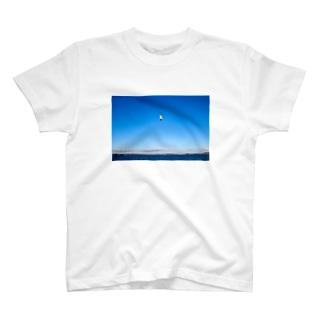 松島で飛ぶウミネコ T-Shirt