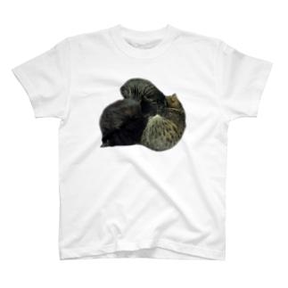 猫家の紋(カラー・前面ver) T-shirts