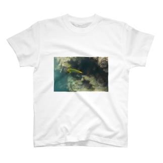 石垣の海 T-shirts