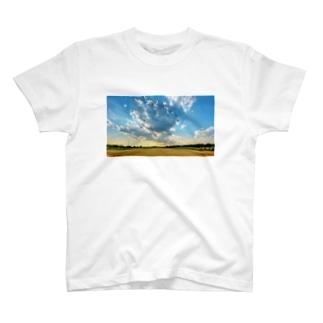 field T-shirts