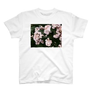 静かな場所 T-shirts