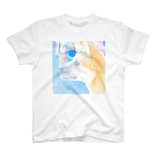 柴犬 夏のまるちゃん T-shirts