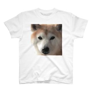 とりいの犬がみている T-shirts