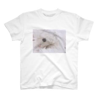 ぼくんちのメーメーちゃん T-shirts