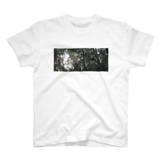 風の道 T-shirts
