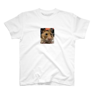 おすましてんちゃん T-shirts