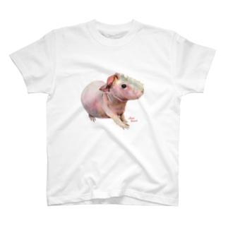 aNone sOnoneのスキニーギニアピッグ Tシャツ T-Shirt