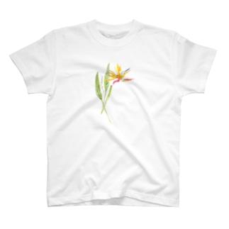 トロピカルフラワー T-shirts