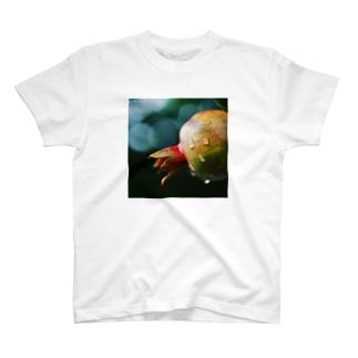 Zakuro T-shirts