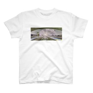 フラッグスタッフTシャツ T-shirts