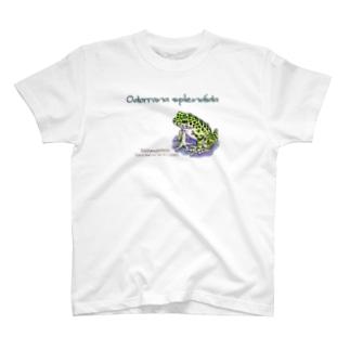 奄美の宝石アマミイシカワガエルくん T-shirts