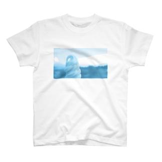 オアシス T-shirts