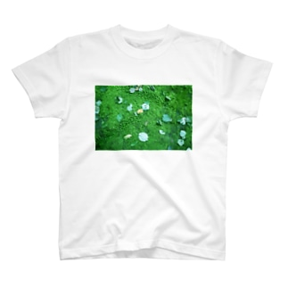 こけ T-shirts