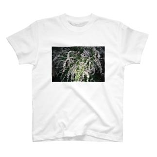 YUKIYANAGI T-shirts