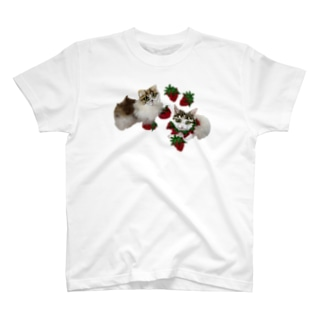 ITO.586168のいちご好きの仲良し猫ちゃんず T-shirts