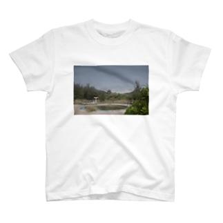 廃プール T-shirts