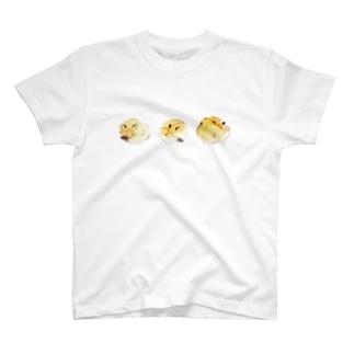 キツネ眠るTシャツ T-shirts