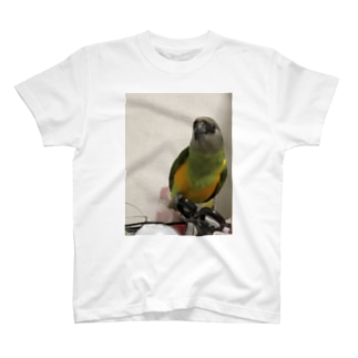 セネガルパロット T-shirts